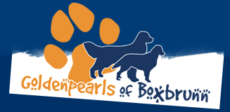 Goldenpearls of Boxbrunn Logo